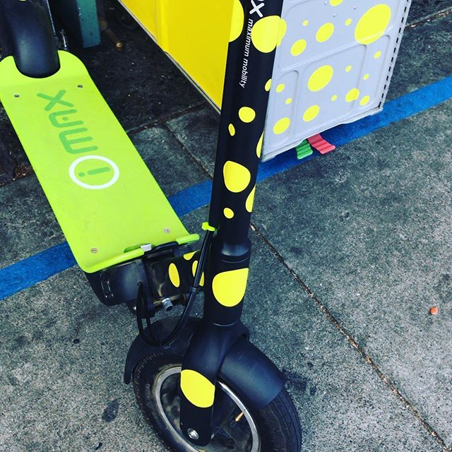 Beautiful day to explore the San Francisco waterfront to the Golden Gate Bridge. Get your scooter 🛴 fix with us! We don't do rentals but we do offer fully guided in on kick butt yep we are the and company during the . . . . . .